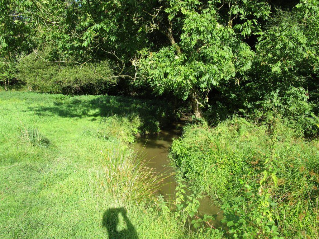 Un morceau de la rivière (été 2017)
