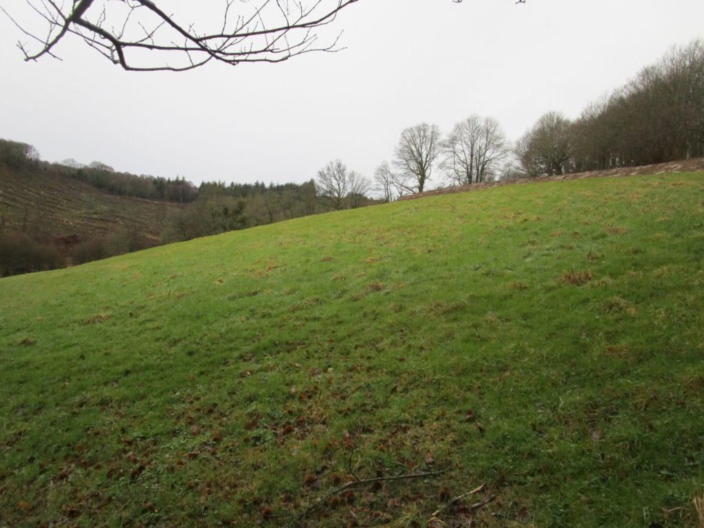 à l'échelle du champ, la surface du terrassement est dérisoire